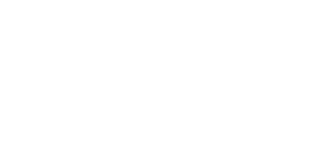 logo-bulletbike-blanco